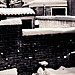 tuin_dakjes_sneeuw.jpg